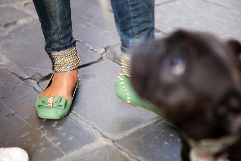 dogand-shoes